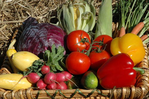 home vegetable gardening explodes reports latest survey  growing, Natural flower
