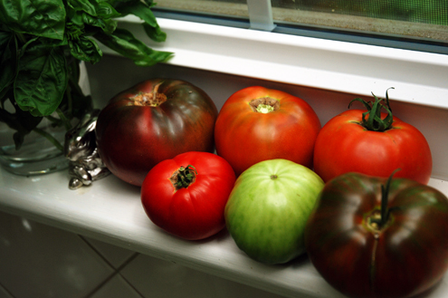 Tomatoes for supper 500