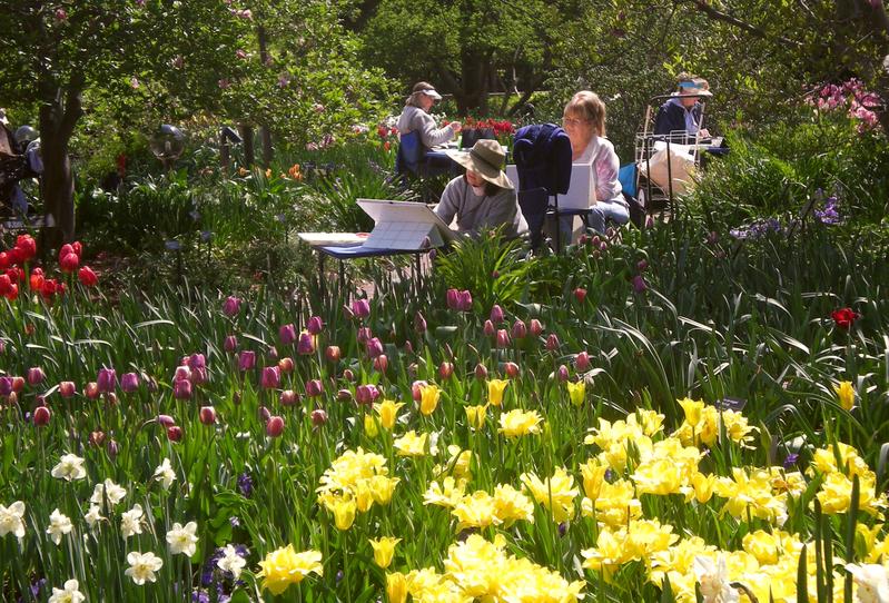 Garden smart tv in the missouri botanical garden